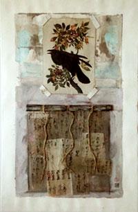 Pajaro-Ser-Crow